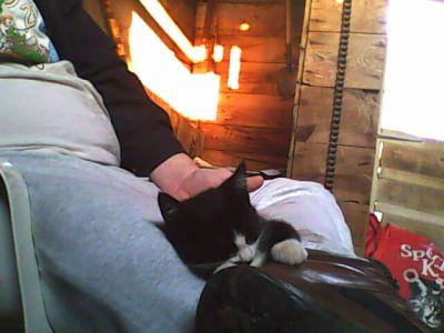 Butler on my lap